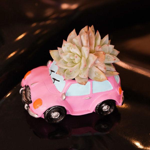 تصویر از گلدان دکوراتیو طرح ماشین